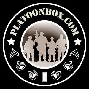 PlatooBox Logo 1000