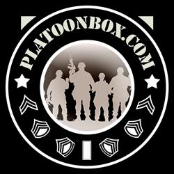 PlatooBox Logo 250